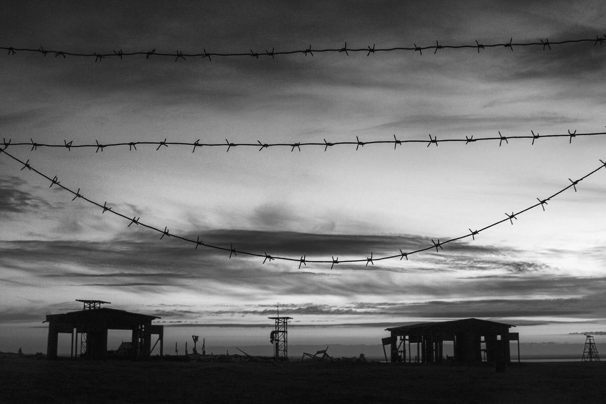 65-CRW_0553©J.Friedhuber